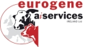 Ai Services by Eurogene, Ireland's fastest growing AI Company.